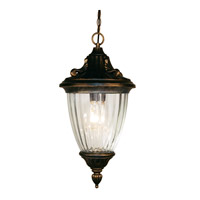 Z-Lite Waterloo 1 Light Outdoor Chain Light in Black Gold 504S-CH-BG
