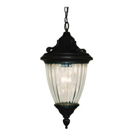 Z-Lite Waterloo 1 Light Outdoor Chain Light in Black 504S-CH-BK