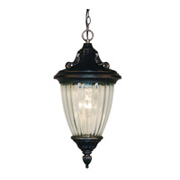Z-Lite Waterloo 1 Light Outdoor Chain Light in Black Silver 504S-CH-BS