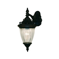 Z-Lite Waterloo 1 Light Outdoor Wall Light in Black 505M-BK