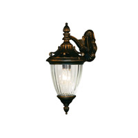 Z-Lite Waterloo 1 Light Outdoor Wall Light in Black Gold 505S-BG