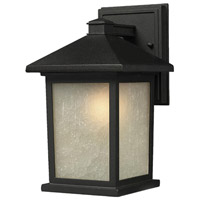Z-Lite Holbrook 1 Light Outdoor Wall Light in Black 507M-BK