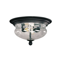 Signature 2 Light 14 inch Black Outdoor Flush Mount