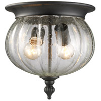 z-lite-lighting-belmont-outdoor-ceiling-lights-516f-bk