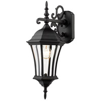 Z-Lite Wakefield 1 Light Outdoor Wall Light in Black 522S-BK photo thumbnail