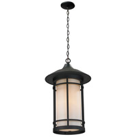 Z-Lite 527CHM-BK Woodland 1 Light 8 inch Black Outdoor Chain Mount Ceiling Fixture
