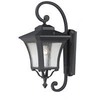 Z-Lite Waterdown 1 Light Outdoor Wall Light in Sand Black 535M-BK