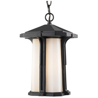 Z-Lite Harbor Lane 1 Light Outdoor Chain Light in Black 542CHB-BK