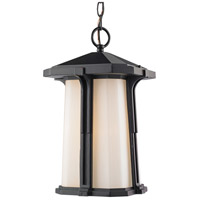 Z-Lite Harbor Lane 1 Light Outdoor Chain Light in Black 542CHM-BK