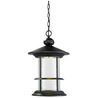 Genesis LED 12 inch Black Outdoor Pendant