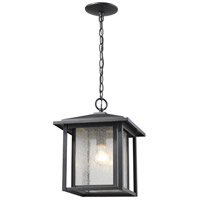 Aspen 1 Light 11 inch Black Outdoor Chain Mount