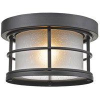 Signature 1 Light 10 inch Black Outdoor Flush Mount