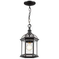 Annex 1 Light 8 inch Black Outdoor Pendant