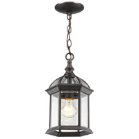 Annex 1 Light 8 inch Rust Outdoor Pendant