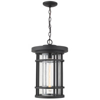Z-Lite 570CHXL-BK Jordan 1 Light 12 inch Black Outdoor Pendant
