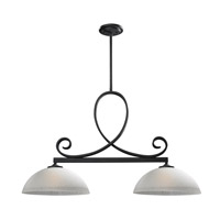 Z-Lite Arshe 2 Light Island Light in Cafe Bronze 603-2
