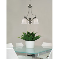 Z-Lite 704-3-BN Lagoon 3 Light 20 inch Brushed Nickel Chandelier Ceiling Light alternative photo thumbnail