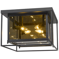 Z-Lite 802F16-MC Infinity 4 Light 16 inch Misty Charcoal Flush Mount Ceiling Light