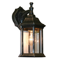 Z-Lite Waterdown 1 Light Outdoor Wall Light in Black Silver T21BS